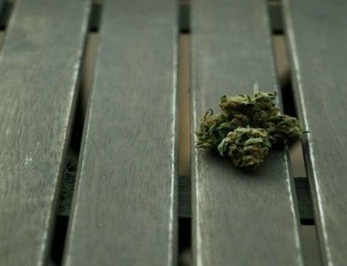 Marijuana Microdosing | Marijuana Barcelona
