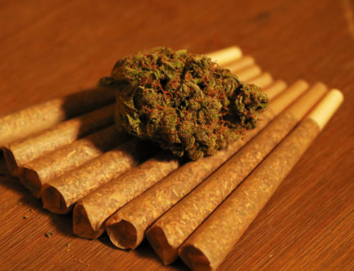 Everything You Need to Know About Hash (Hashish)